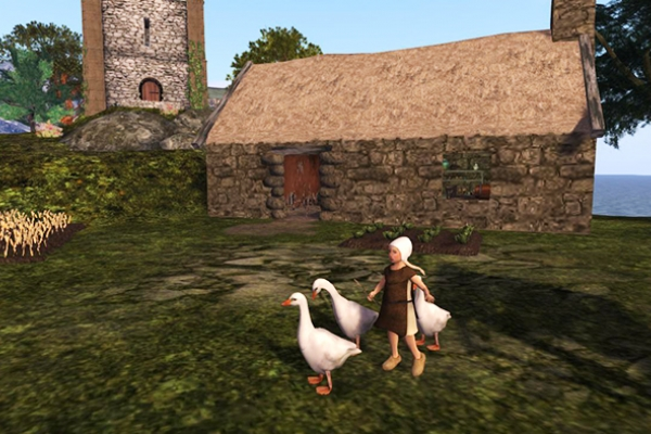 NM Goose Girl 657 x 394